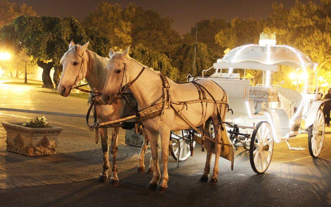 Đakovo: Adventska ponuda obogaćena vožnjom na fijakeru