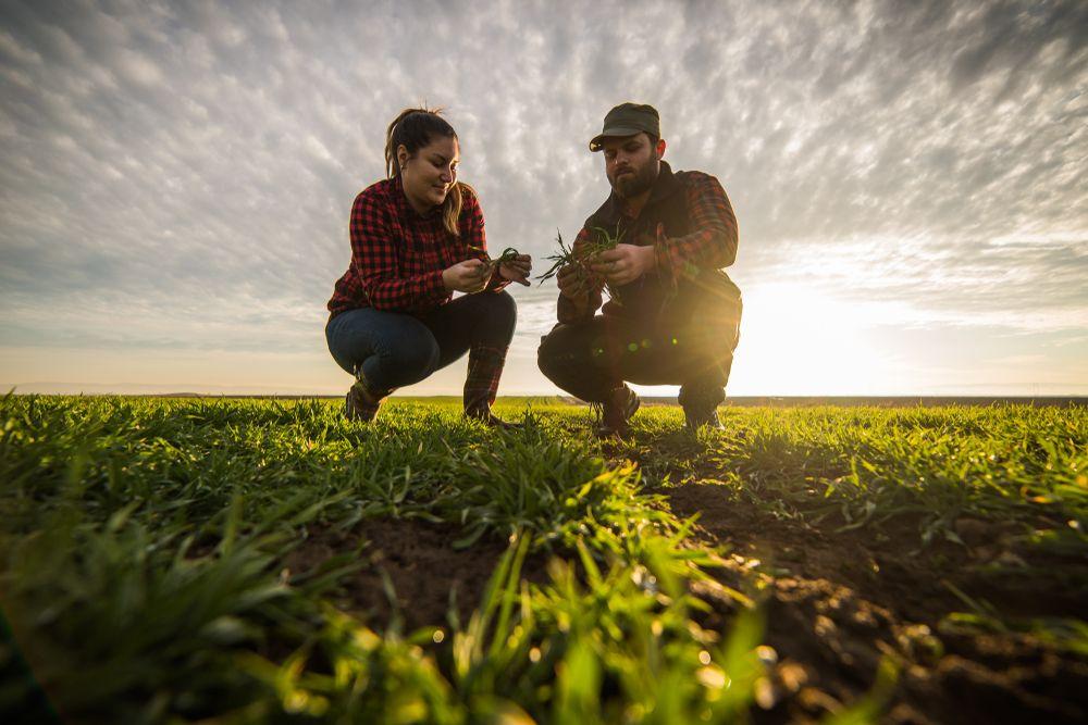 Za poljoprivrednike i dalje najviše izdvaja Ozalj, Imotski sredstva za potpore povećao više od 1.700 posto!