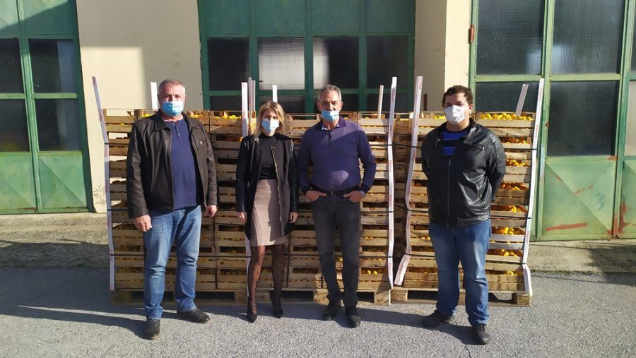 Orahovica: Braniteljske udruge s juga Hrvatske donirale dvije tone mandarina; podijelit će se vrtićima, obrazovnim ustanovama, Crvenom križu i humanitarnim udrugama