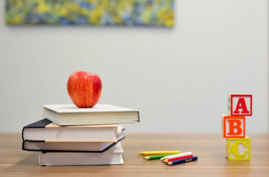 "Slavonski Brod: Nastavljen uspješan projekt socijalizacije i obrazovanja romske djece – ""Win-win"""